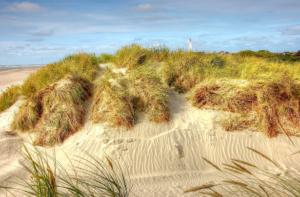 Blåvand Beaches in denmark